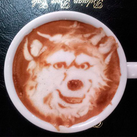 Barking orders: Next time you head into Costa, we dare you to ask for a skinny cappuccino with a wolf on top! \ Rex Features